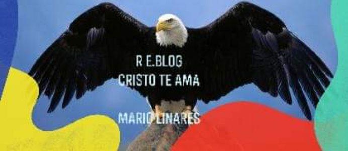 R E.BLOG